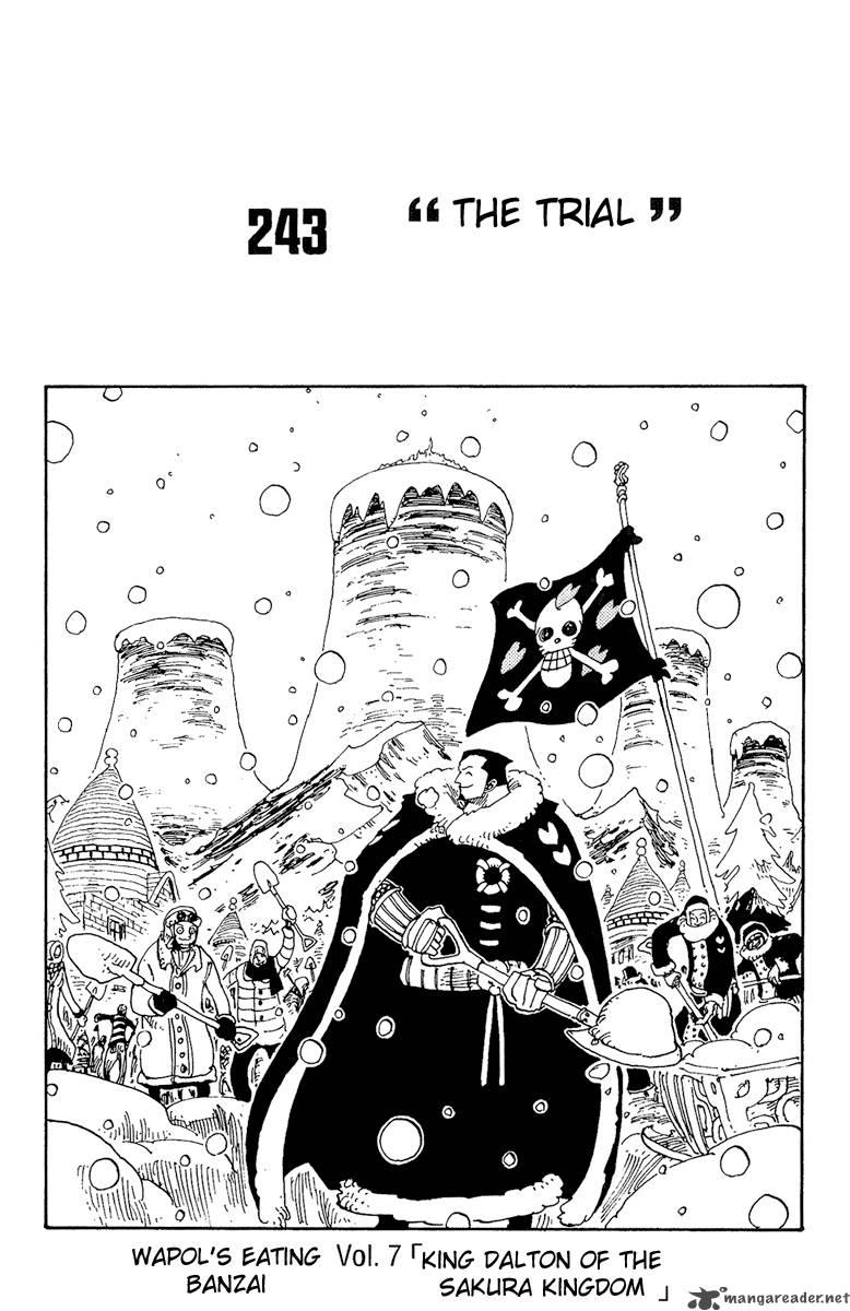 One Piece 243
