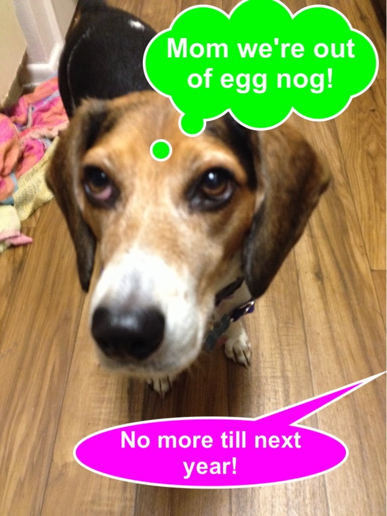 Life With Beagle Lulu Egg Nog And The Trouble With The Internet