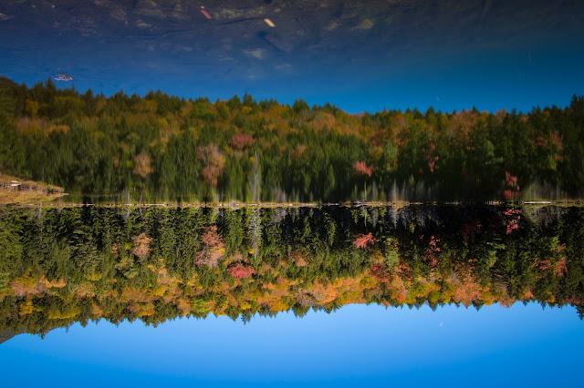 Foliage-Rocky gorge-Kancamagus Hwy e White mountains