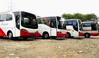 Harga Sewa Bus Sedang Yang Murah, Harga Sewa Bus Sedang, Sewa Bus Sedang
