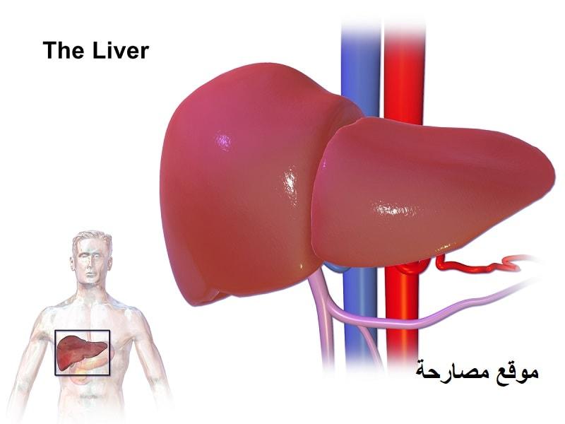 ما هو مرض التهاب الكبد الوبائي ؟