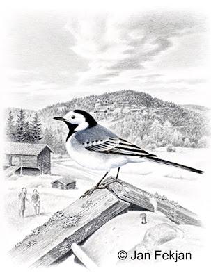 Bilde av digigrafiet 'Linerla'. Digitalt trykk laget på bakgrunn av et maleri av en fugl i sommerlandskap. En illustrasjon av linerle, Motacilla alba. Fuglen sitter på mønet av et tak. I bakgrunnen er det gårdsbygninger og to jenter som ser opp mot linerla. Stilen kan beskrives som figurativ og realistisk. Bildet er i høydeformat.