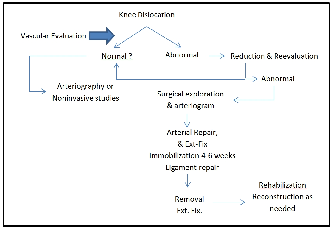 Orthopaedi Knowledges: DISLOCATION OF THE KNEE JOINT