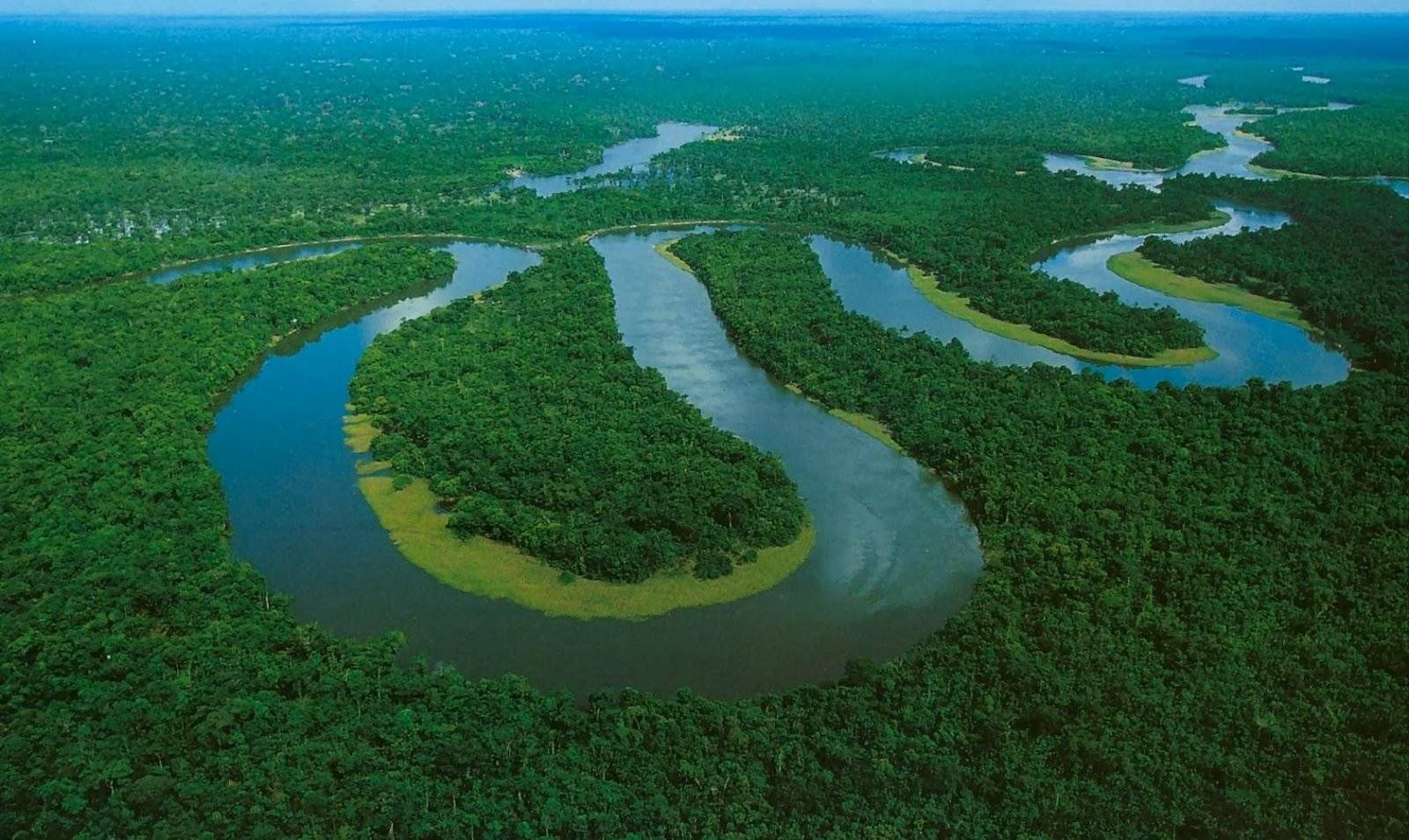 Rio Juruá, Afluente do Rio Amazonas