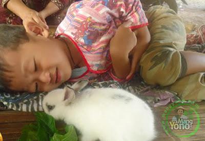 Keuntungan Memiliki Binatang Peliharaan Bagi Anak