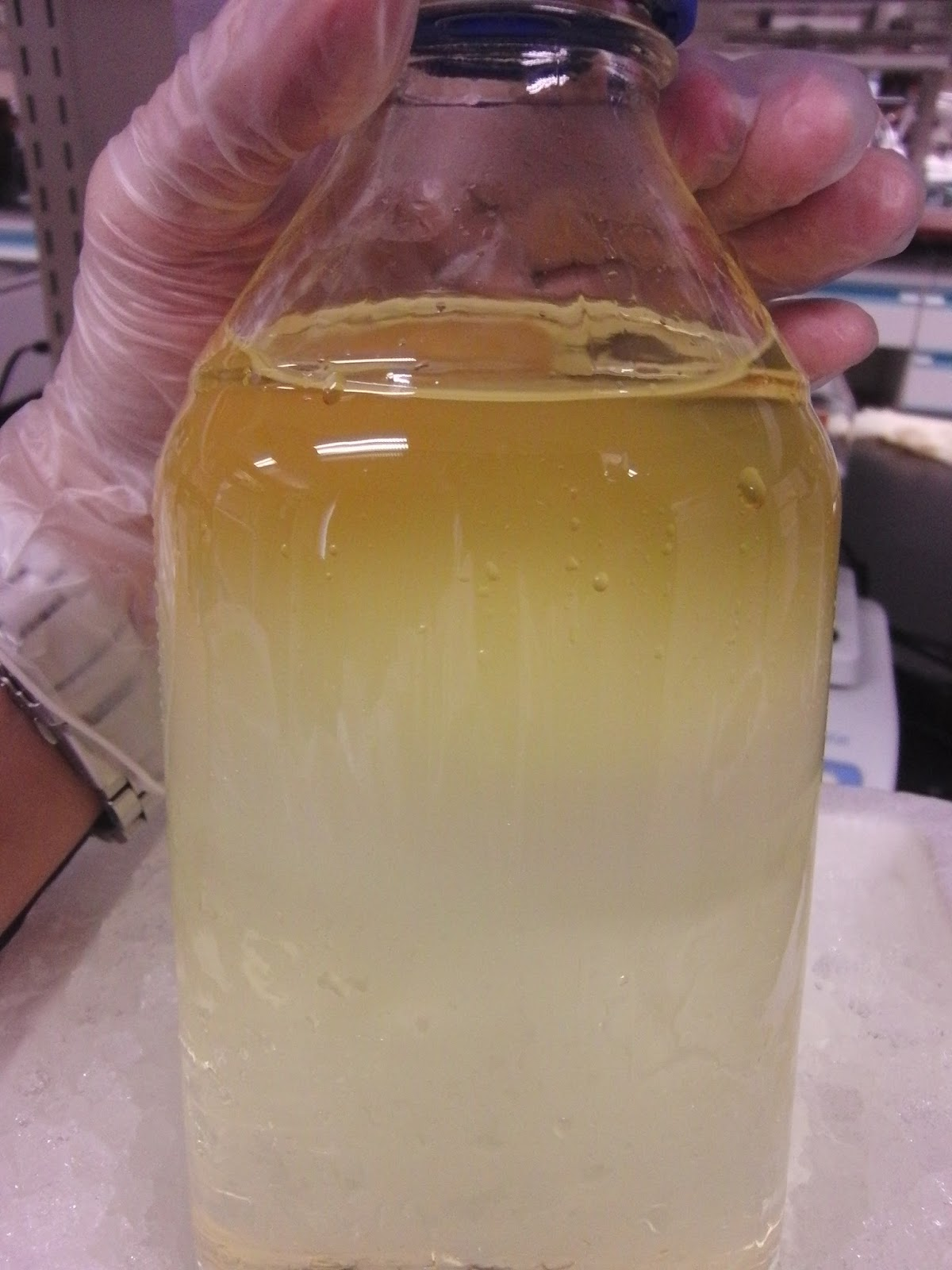 Lu Le Laboratory: Synthesis of Chloroform from Acetone and