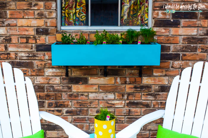 Window Boxes with Herbs