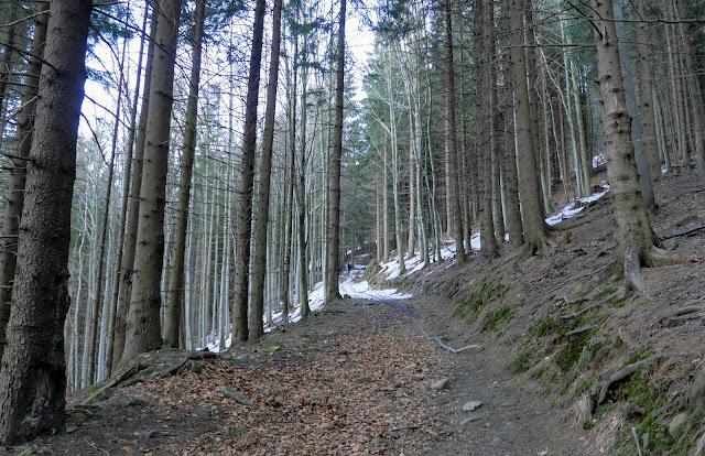 Łysa Góra Czechy szlaki turystyczne