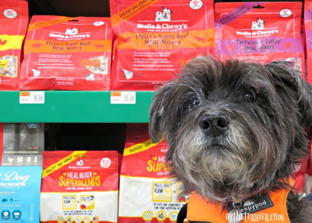 oz finds stella and chewys raw dinners for dogs at local pet store