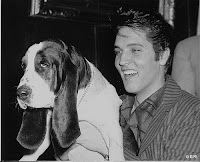 Elvis Presley+dog