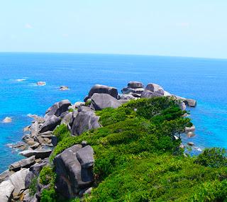 similan island day tour
