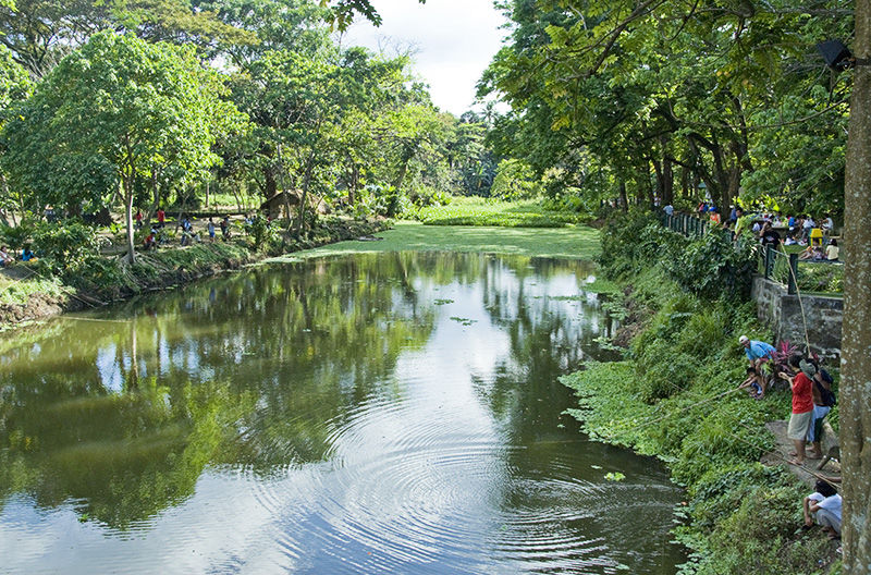 Tourists haven - La mesa eco park swimming pool photos ...