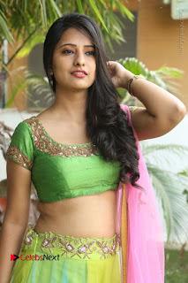 Actress Nikitha Bisht Stills in Lehenga Choli at Pochampally Ikat Art Mela Launch  0091.JPG