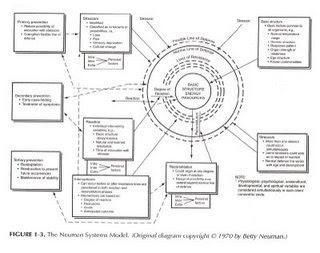 Pengejarmatahari : Analisis teori betty neuman