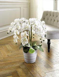 iskusstvennaya-orhideya