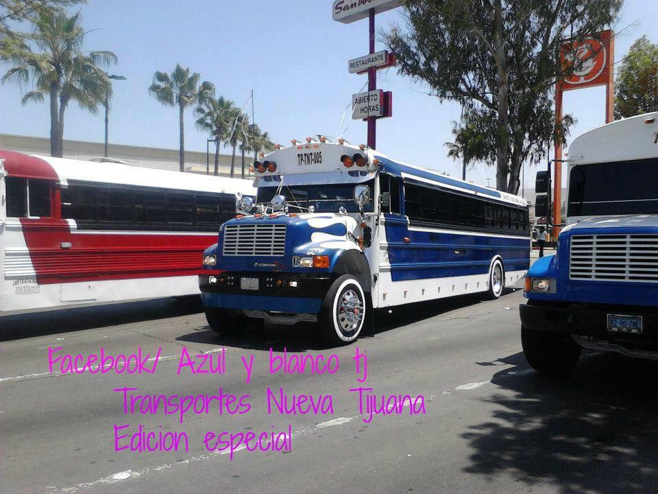 Tijuana camion azul y blanco cogiendo - 1 part 10