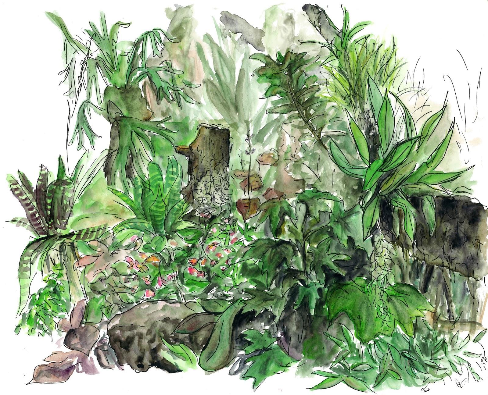 Paloompa My Head Is A Jungle