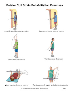 integrated fitness blog shoulders 202 a rehab view
