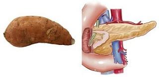 Sweet Potato is linked with Pancreas