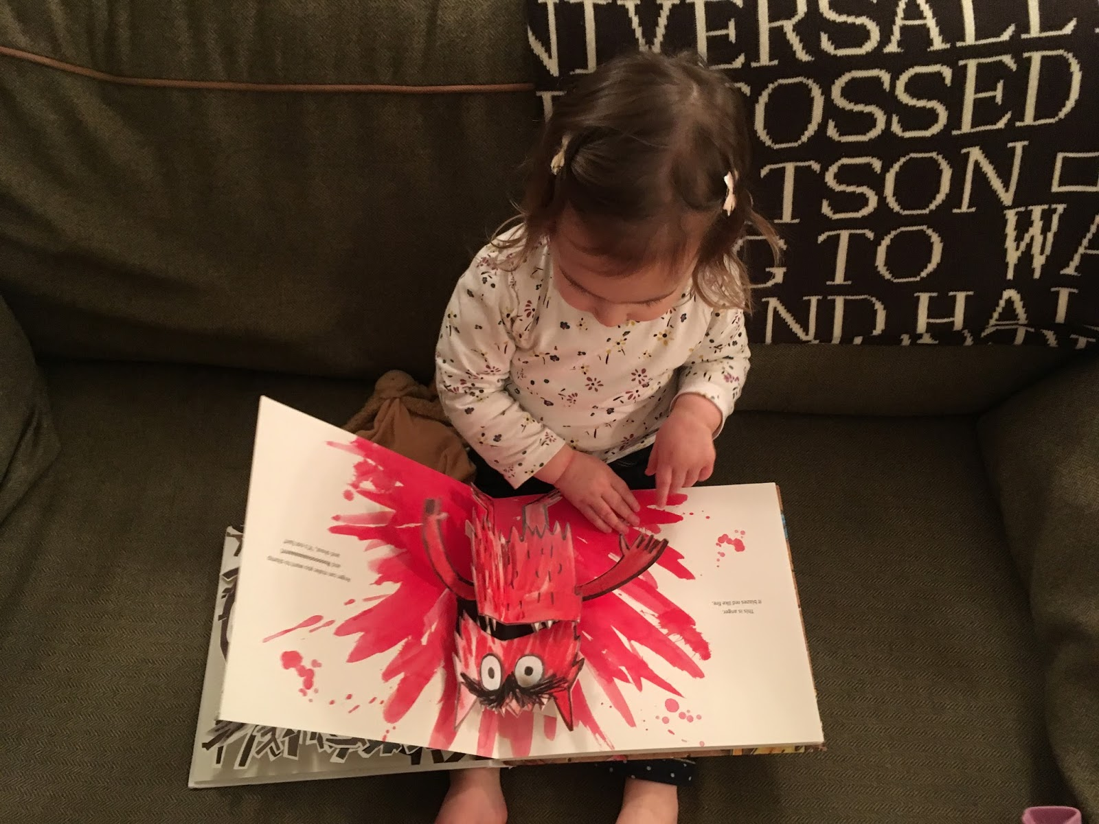 The Colour Monster Bookbairn