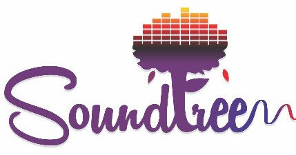 Soundtree - DJ Entertainment Service in Mohali, Chandigarh, Punjab India