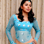 Bhumika Chawla Hot in Beautiful Blue Color Dress