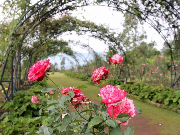 7 Tourist Attraction In Garut City That Suitable For Your Family Holiday