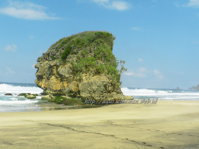akcayatour, Pantai Kondang Iwak, Travel Jogja Malang, Travel Malang Jogja, Wisata Malang