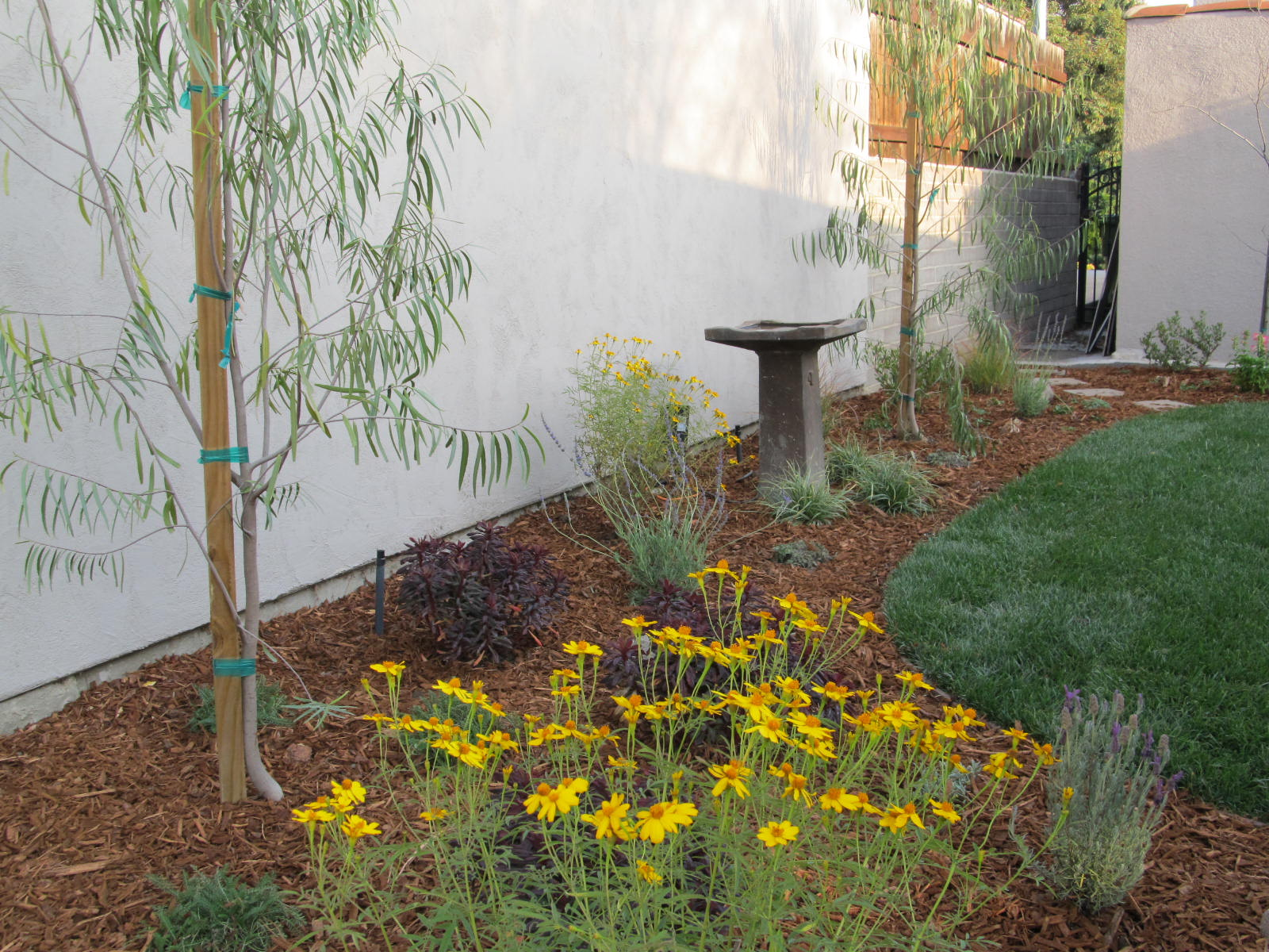 Fairy Yardmother Landscape Design: Backyard Makeover on a ... on Patio Makeovers On A Budget id=87158