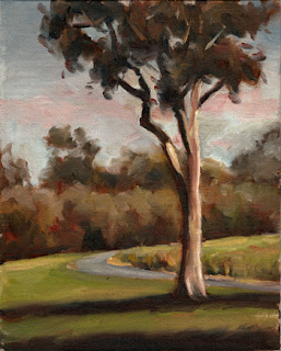 Oil painting of a lemon-scented gum beside a bitumen path with trees and shrubs in the background.