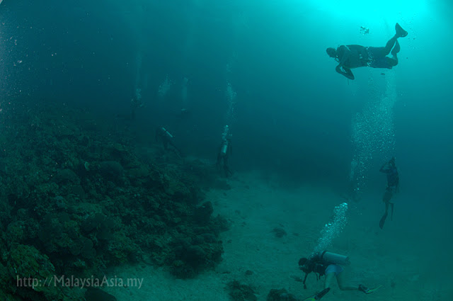 Mantanani Dive Pictures