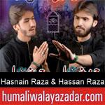 https://www.humaliwalyazadar.com/2018/09/syed-hasnain-raza-syed-hassan-raza.html