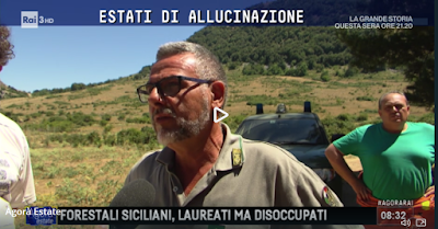 http://www.raiplay.it/video/2017/07/Forestali-Siciliani-laureati-ma-disoccupati---14072017-835a9054-8ad3-4180-ab8f-d732a53135cb.html#