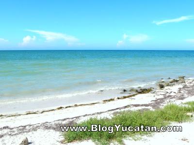 Playa  en San Crisanto Yucatán México