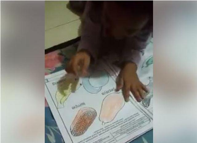 Video Anak ini Menjadi Viral Setelah Ibu Memposting di Medsos, Bikin Ngakak Guling-guling