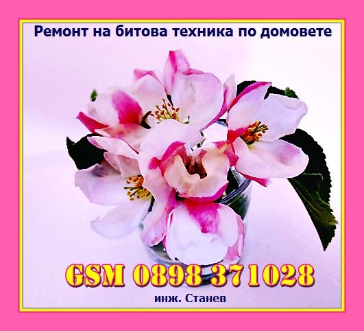 великден, ремонт, цвете, празник, ремонт, техник,