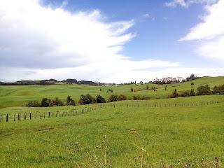 ニュージーランドの牧場。