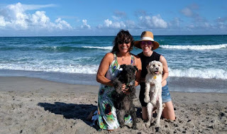 Two females at the beach with their dogs: A mini schnauzer and a poodle mix.