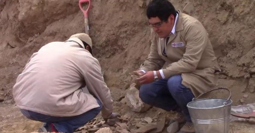 Descubren restos arqueológicos que podrían pertenecer a la cultura Wari cerca de complejo Wariwillka, en Junín