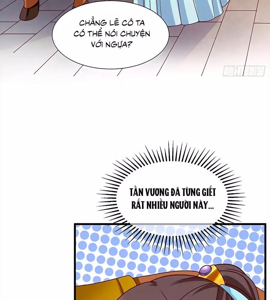 Quyền Phi Chi Đế Y Phong Hoa chap 9 - Trang 3