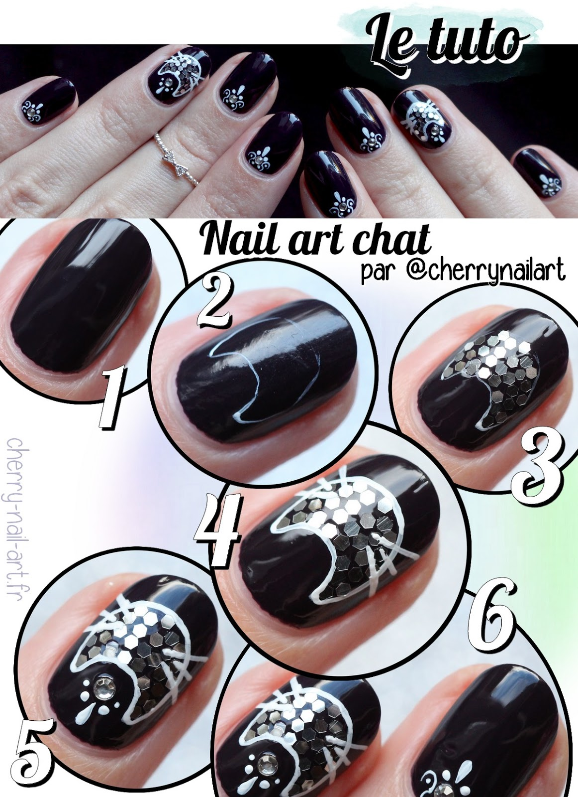tuto-nail-art-chat-paillettes-facile