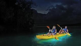 SUBHANALLAH ! Inilah Teluk Ajaib yang Katanya Bisa Pantulkan Cahaya di Malam Hari