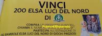 Logo Vinci 200 bambole Elsa Luci del Nord con Duracell