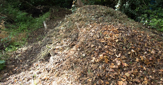 Composting Woodchip - it works!