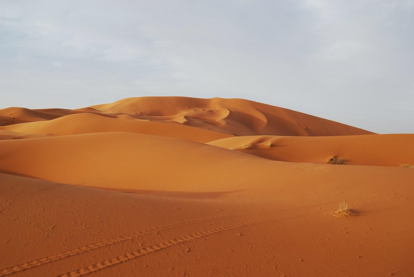 Que PersonalLo Es En Se Queda No Pasa Marruecos Nada rxQWdCBeoE