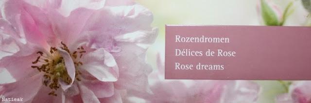 Délices de rose de Dr. Hauschka