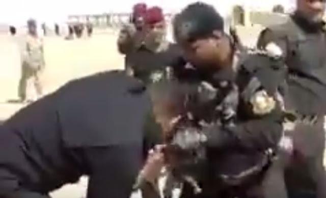 Menjijihkan, Tentara Syiah Houthi Memakan Hewan Hidup-hidup (Video)