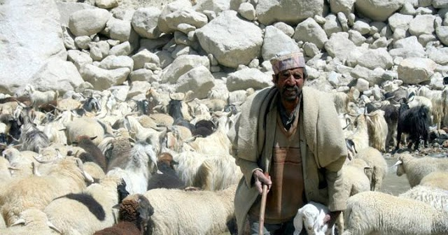 ENGINEER'S HUB: Castes and Tribes of Himachal Pradesh