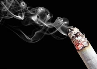 bisnis rokok luna maya