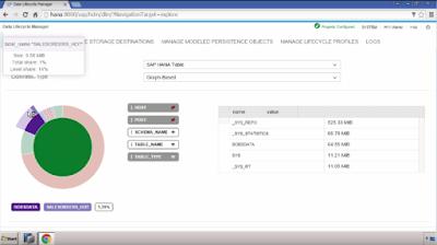SAP HANA Data Lifecycle Manager